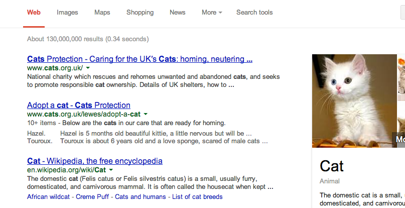 "Search results for ""cats"""