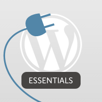 Link to3.5 hours of wordpress plugin development training