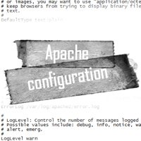 Apache 2 basic configuration prev img