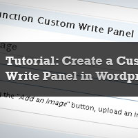 WordPress Write Panels
