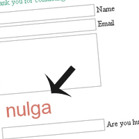 Preview for Build Your Own Captcha and Contact Form