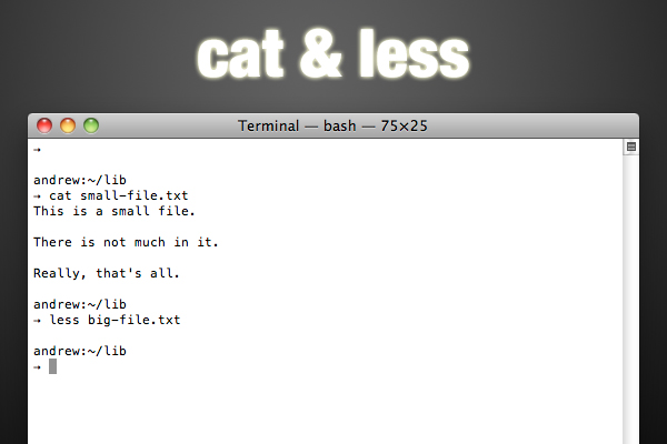 cat and less