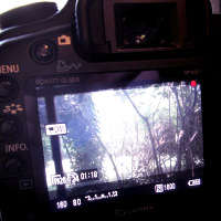Preview for Getting Started with DSLR Video: Part One