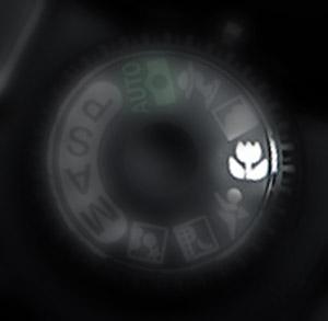 Macro dial