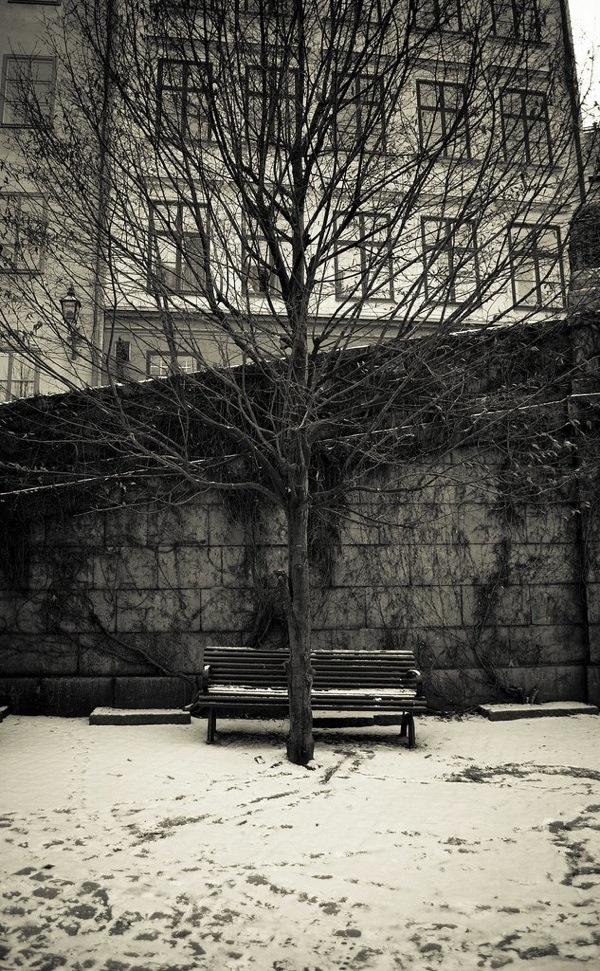 Photo Critique