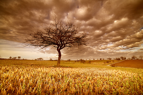 landscape photography inspiration examples