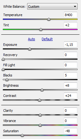 Camera Raw settings for new layer