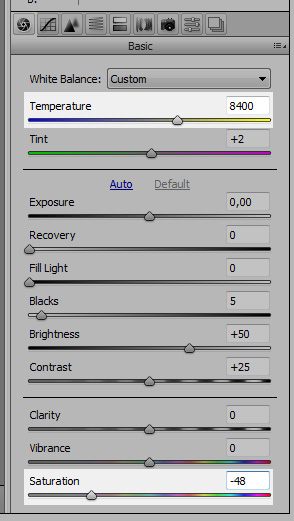 Temperature and saturation in Camera Raw
