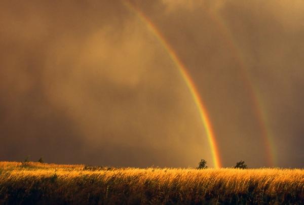 rainbow photography tips