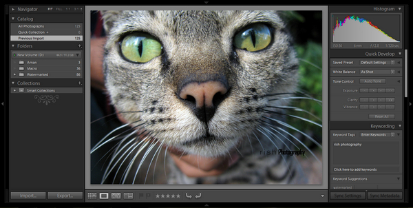 why you should consider adobe photoshop lightroom