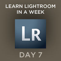 Preview for Learn Lightroom in a Week - Day 7: Export and Publishing