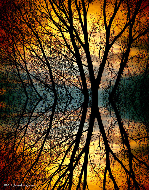 Creatively Approaching Abstract Photography