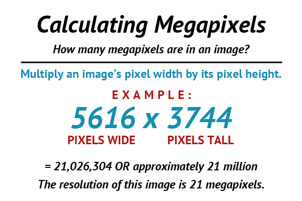 An In-Depth Look at Megapixels and Resolution