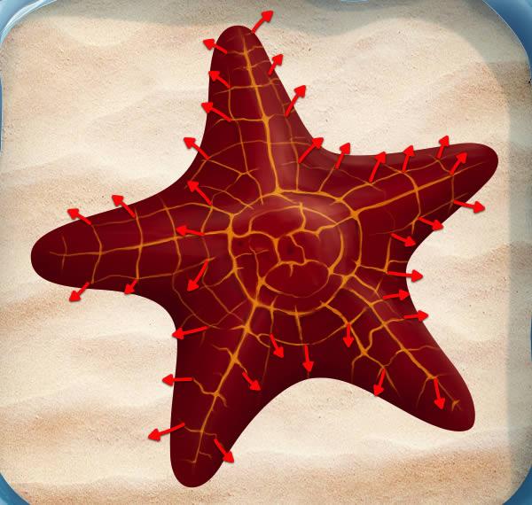 Spores direction