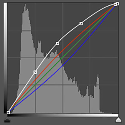 Preview for The Ultimate Guide to Adjustment Layers - Curves