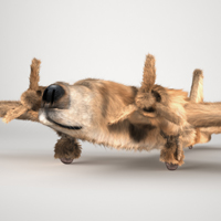 Create a World War II Era Dogfighter