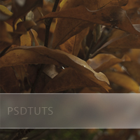 Preview for Quick Tip: Add a Frosted Background to Photo Captions