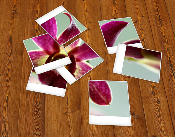 Quick tip: create a set of scattered polaroids