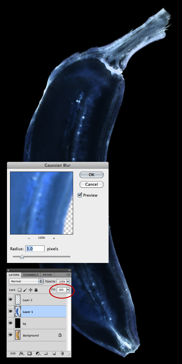 X-ray Filter Photoshop - Bing images