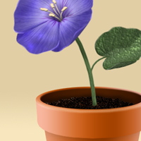 Preview for Create a Flowerpot From Scratch in Photoshop