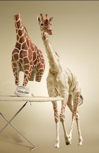 Undress a Giraffe in Photoshop