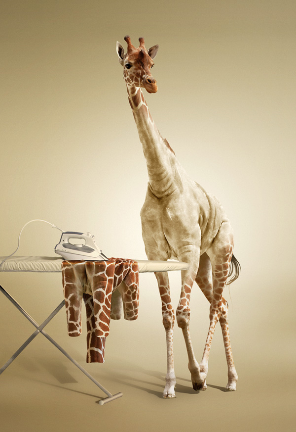 Link toUndress a giraffe in photoshop