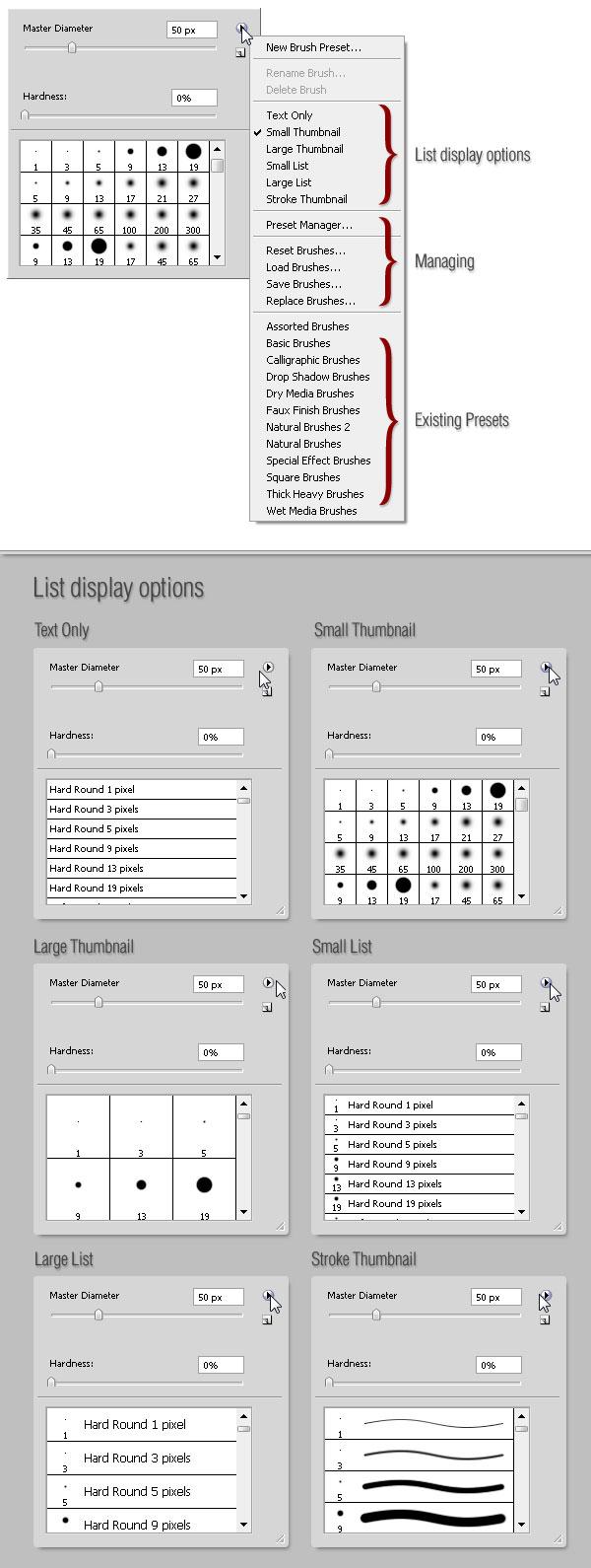 Photoshop Brush Tool: A Basic Guide