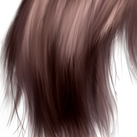 Preview for Paint Realistic Hair Using Photoshop