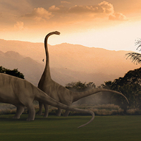 Create a Herd of Grazing Dinosaurs in Photoshop – Psd Premium Tutorial