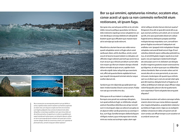 how to get ride of margin guides indesign