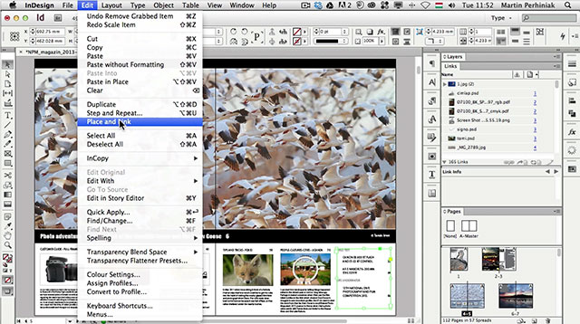 Link toPlace and link multiple instances of the same content in adobe indesign
