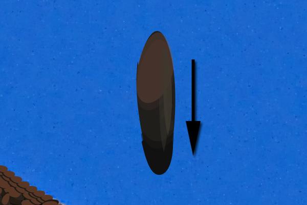 baldeagle14-1_wingbluebrush
