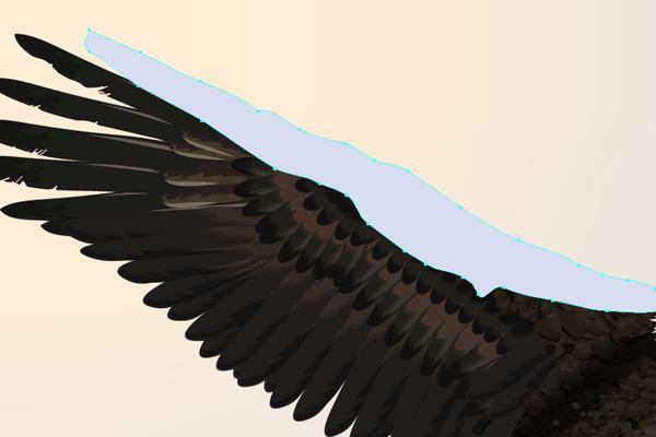 baldeagle19-1_winglight