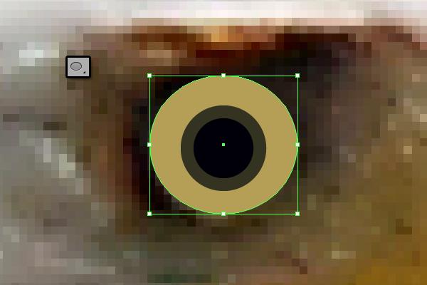 baldeagle2-3_eye3