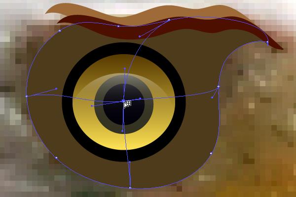 baldeagle3-2_eyelids