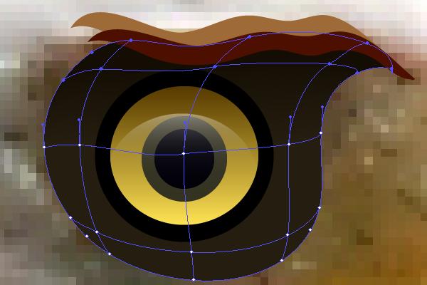 baldeagle3-3_eyelidsmesh