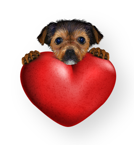 How to create a cute valentine 39 s puppy with gradient mesh - Valentines day pictures with puppies ...