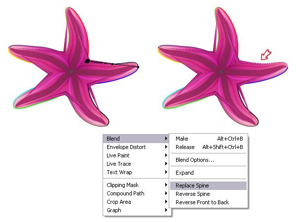 diana-QT-Starfish-17