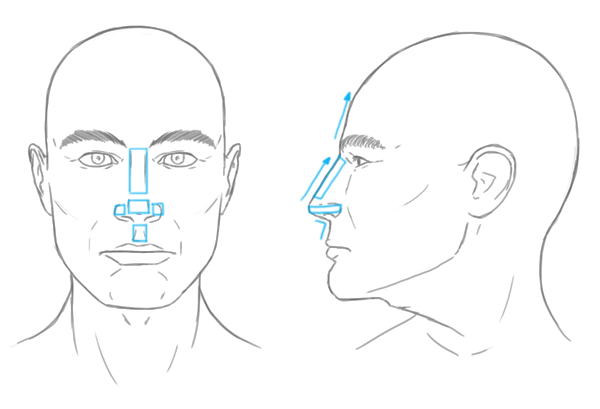 Sharp Edges Drawing Drawing a Nose With Sharp