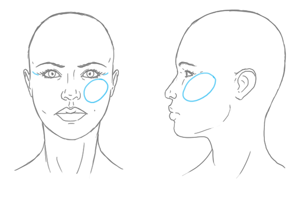 Woman S Face Line Drawing : The differences between male and female portraits