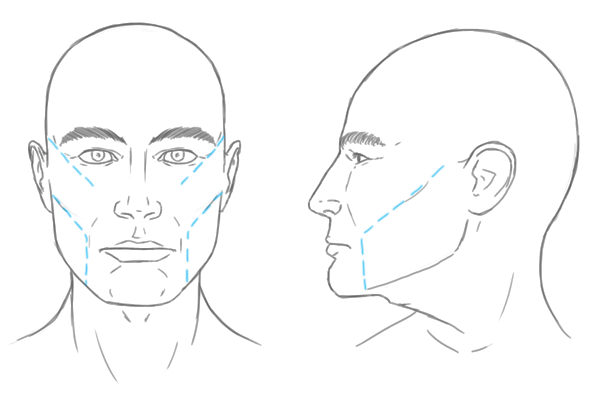 Line Drawing Female Face : The differences between male and female portraits