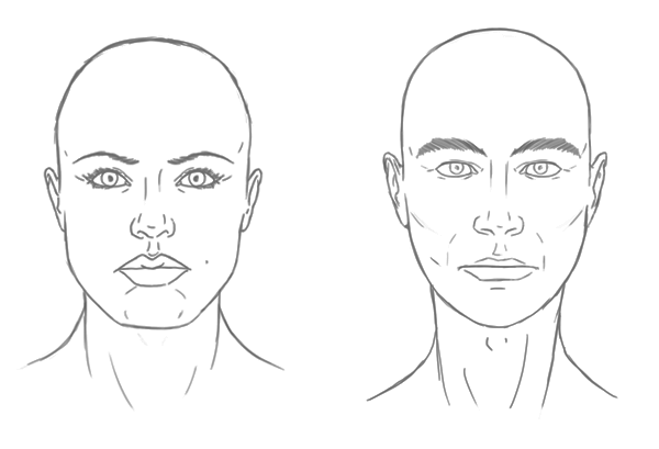 the differences between male and female portraits