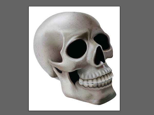 skull_11-10_clipping_mask