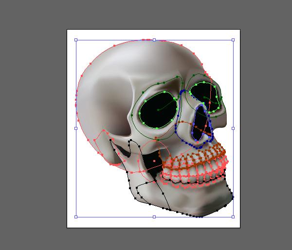 skull_11-2_offset_path