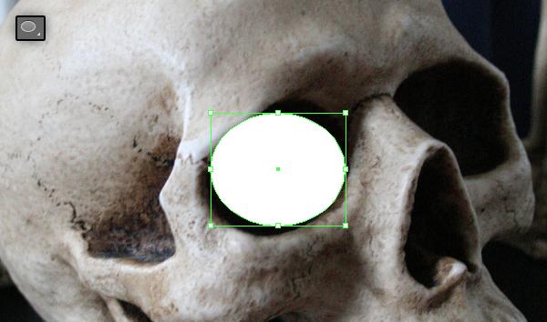 skull_3-1_eyes