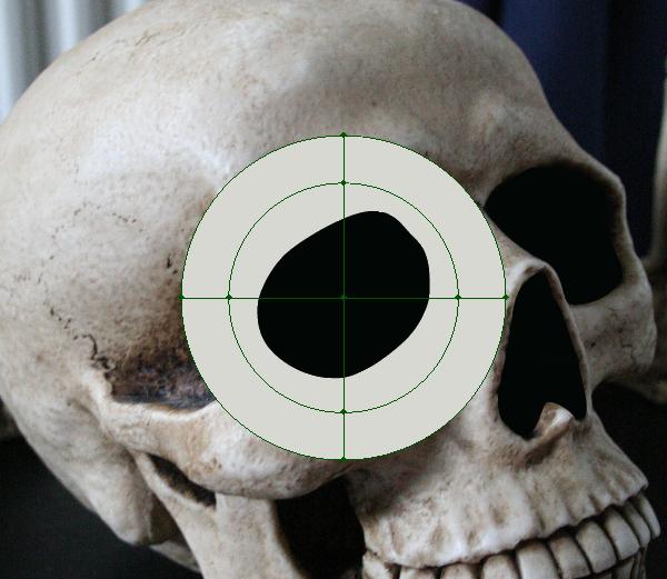 skull_4-2_circular_mesh