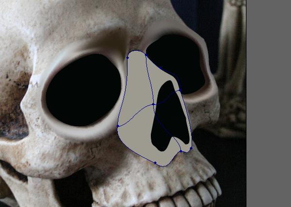 skull_5-2_nose