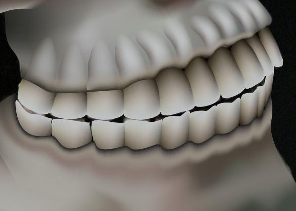 skull_9-4_teeth