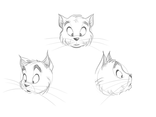 How To Draw A Cat Cartoon