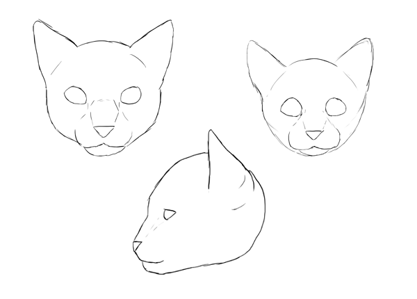 Catdrawing 4 11 face proportions done